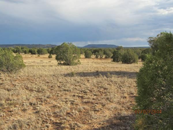 18.58 Acres on Concho Highway at Blue Diamond Rd, Apache County, AZ ...